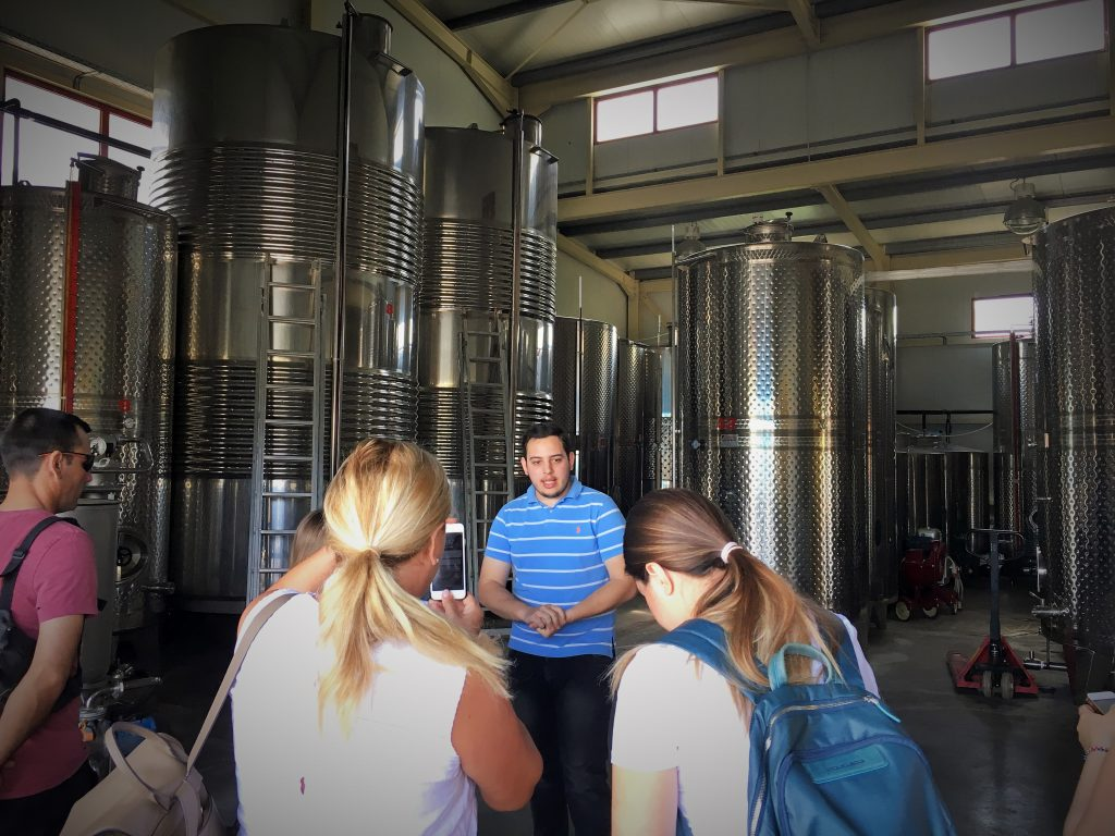 Bairaktaris Winery Nemea   Greece2Taste Winery Tour